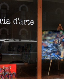 Exhibiting at galleria d'arte